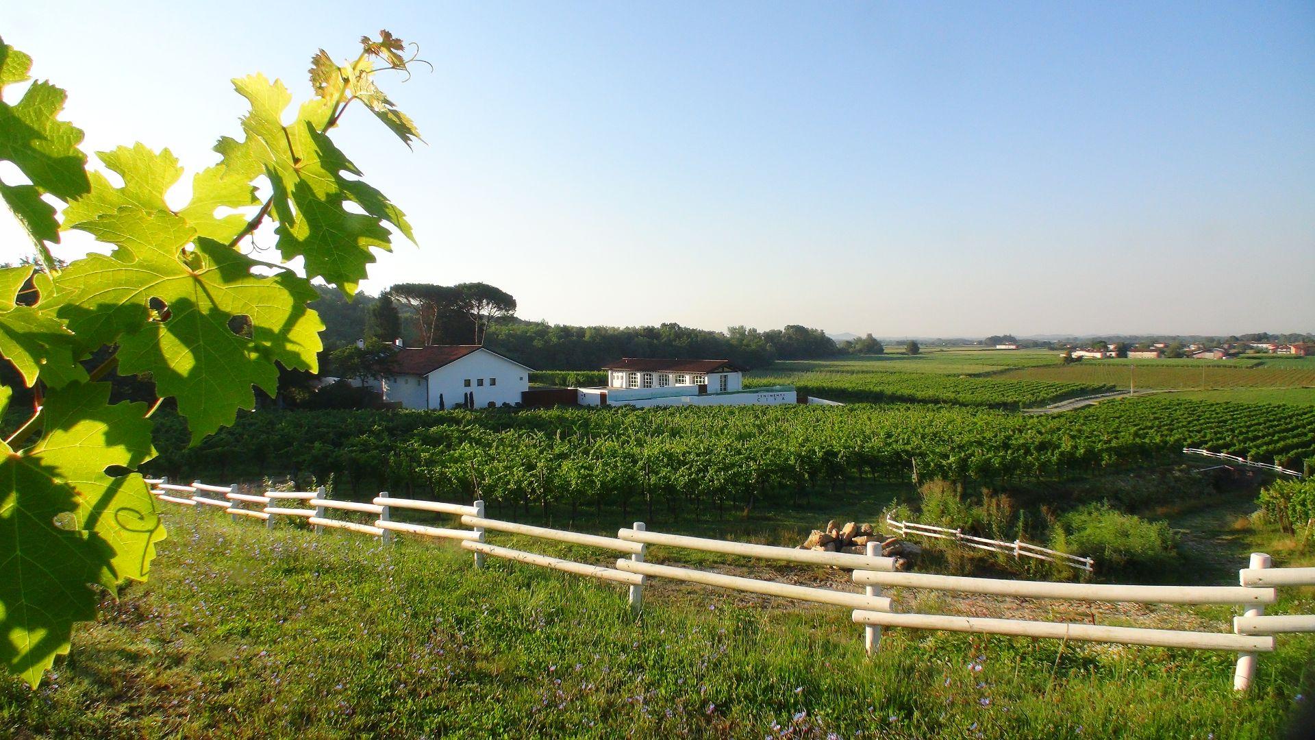 Azienda agricola Tenimenti Civa