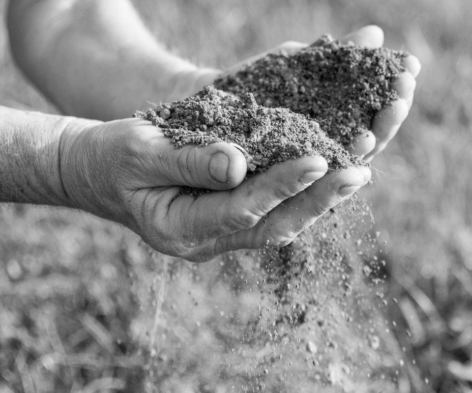Terreno e mani