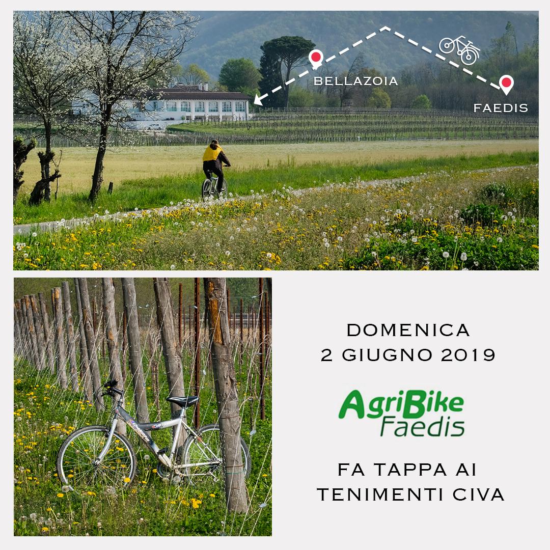 L'Agribike Faedis fa tappa ai Tenimenti Civa sui Colli Orientali del Friuli