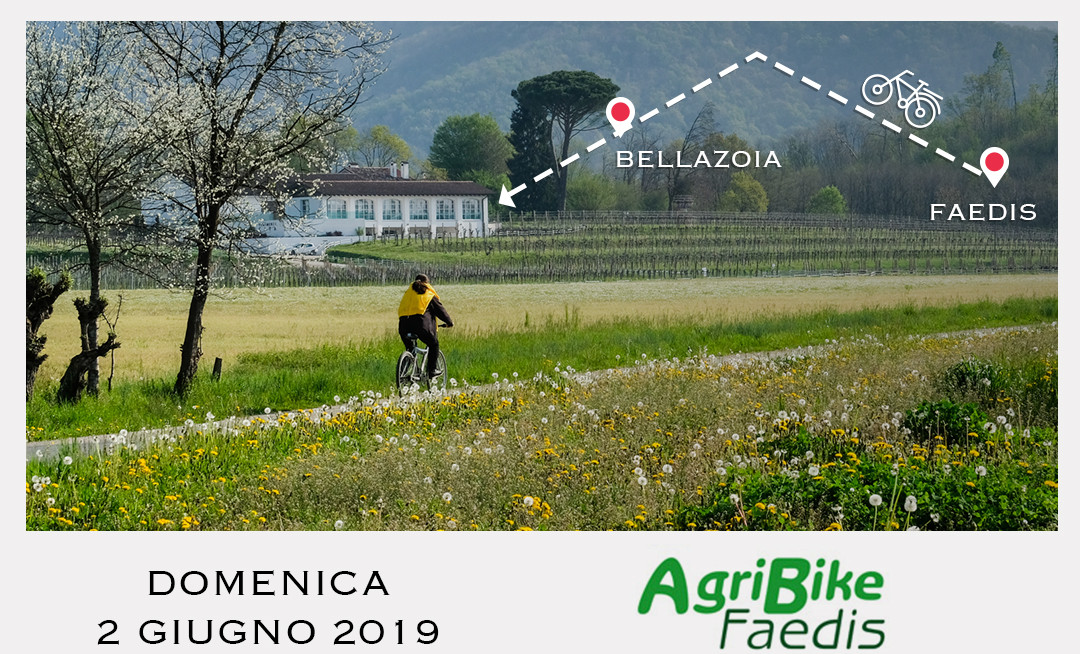The Agribike Faedis bicycle ride will be stopping at Tenimenti Civa in the Colli Orientali del Friuli