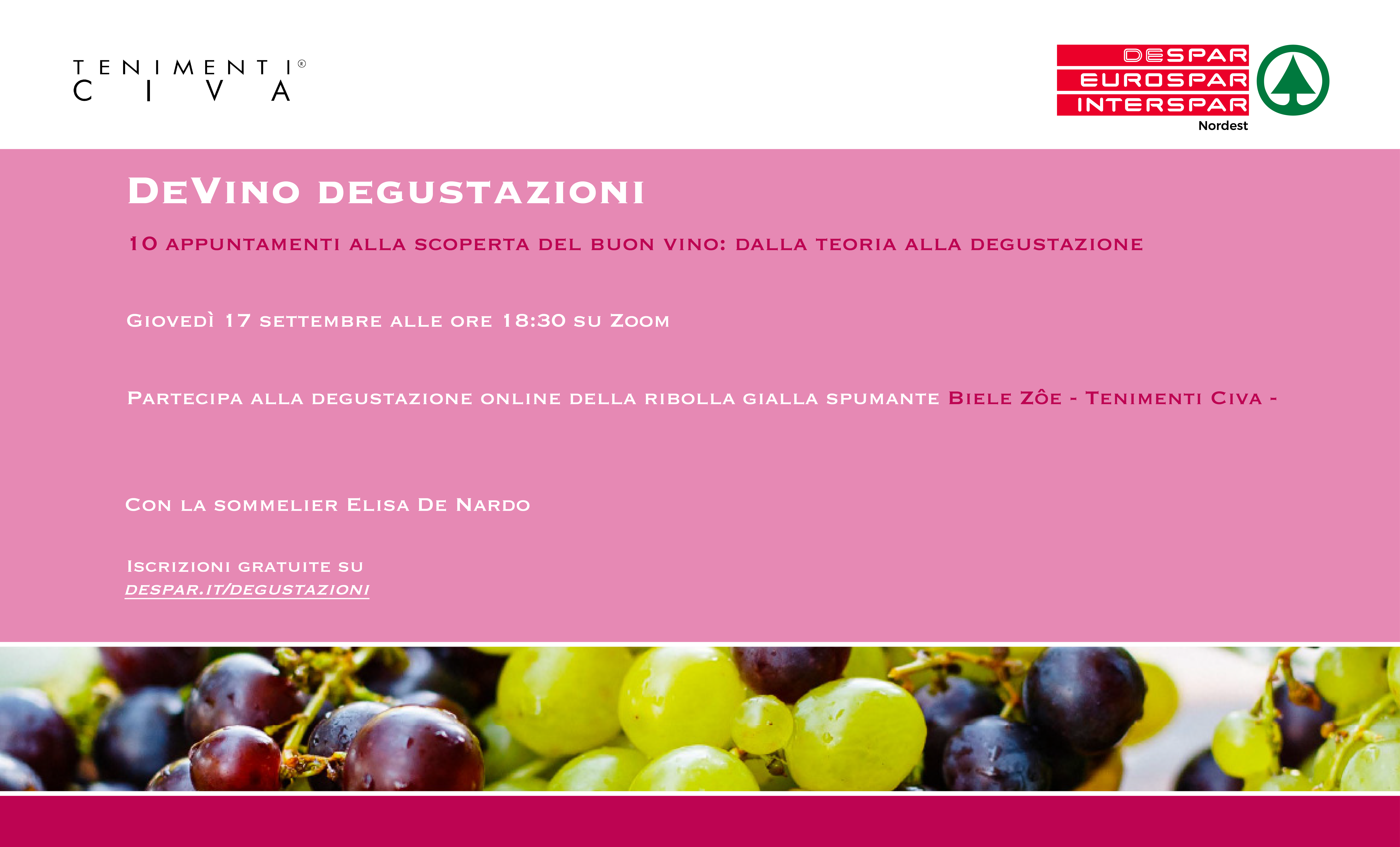 Discover good wine with us on Zoom: from theory to tasting with Tenimenti Civa, Despar, and Slow Food's Elisa De Nardo